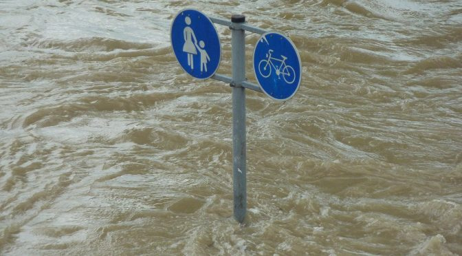 Themenspecial zur Flutkatastrophe: Rettung digital